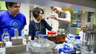 Photo of Meet the devoted Pinay scientist aiming to discover a cure for cancer from the sea