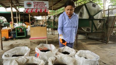Photo of Villar: Waste management must continue amid COVID-19